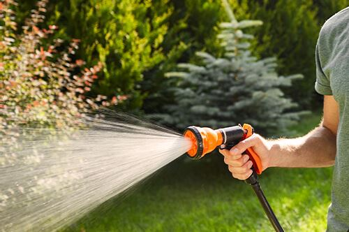 kaw-valley-prepare-yard-for-winter-man-watering-shrubs.jpg